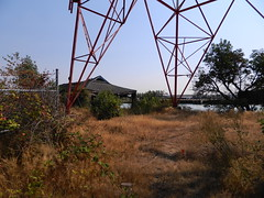 Abandonment Under the Bridge