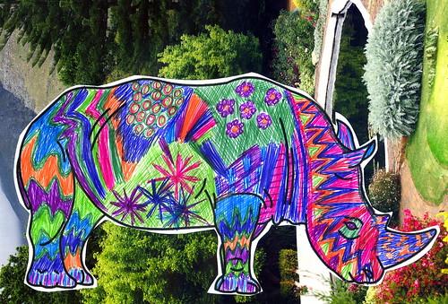Rhino009