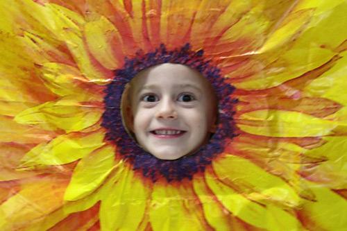 Auttie-Sunflower