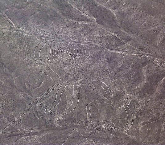 Líneas de Nazca: Figura de el mono