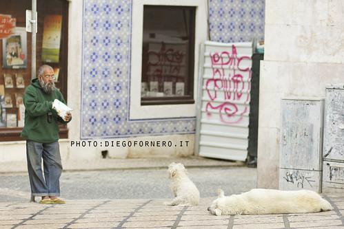 o senhor dos cães by diegofornero (destino2003)
