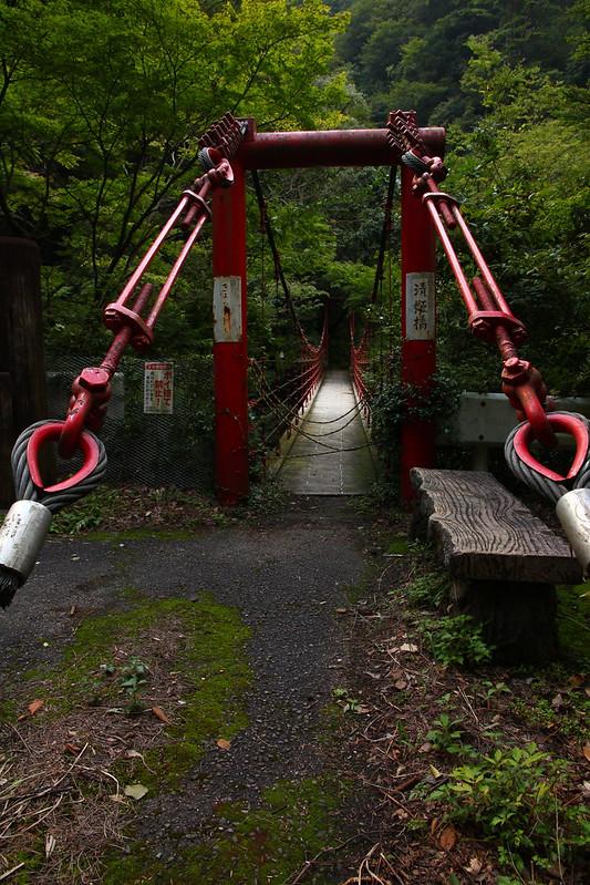 IMG_2583_9-19 Kiyotaki Fall