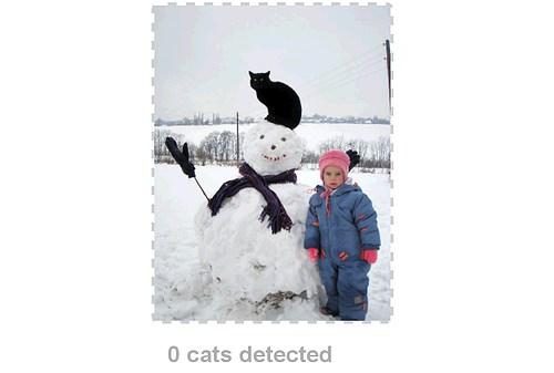 Kittydar6
