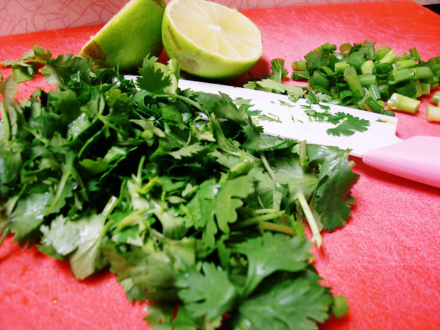 Cilantro, Lime and Green Onion
