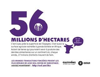 56 millions d'hectares : la superficie de l'Espagne. C'est aussi la surface agricole rachetée à grande échelle en Afrique