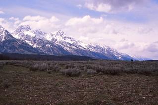 Wyoming  -   Grand Teton National Park  -  June 1975