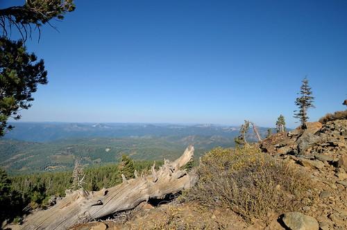 tahoenationalforest