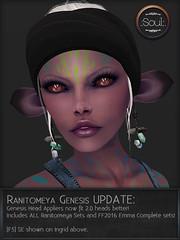 Ranitomeya Genesis Update!