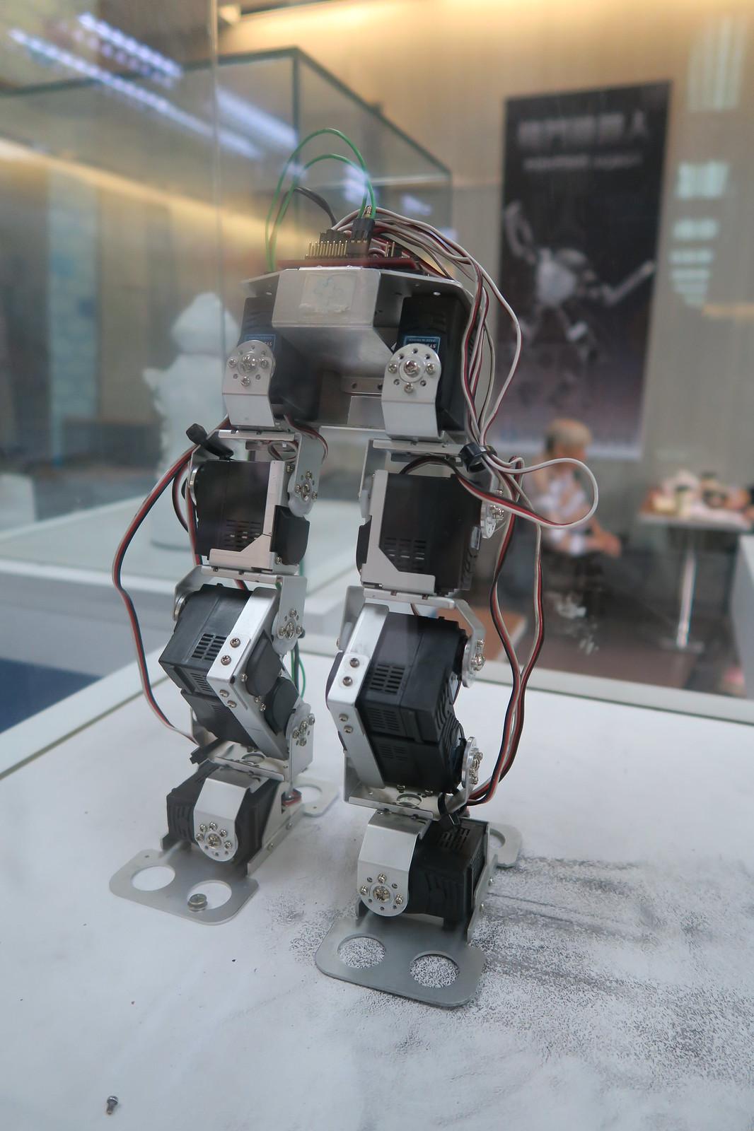 桃園市祥儀機器人 (3)