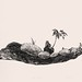 10.流木盆景之一40X54cm‧紙凹版collagraphs‧版數1-10‧2012