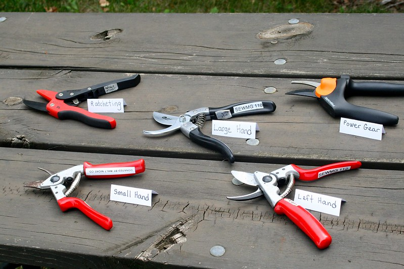 selection of pruning tools