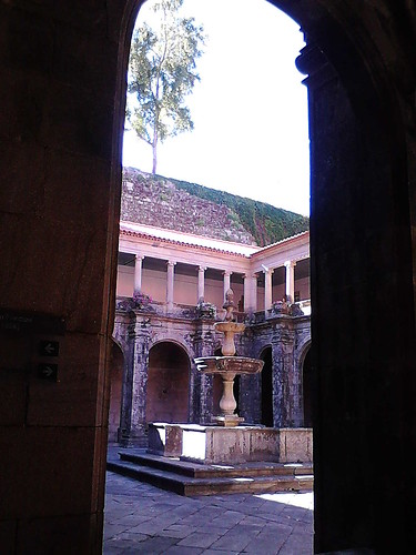 The fontain, the tree and the cloister