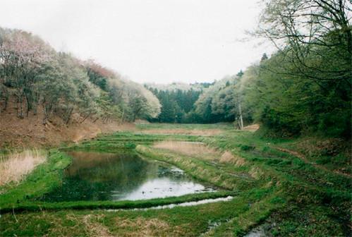 透過充分自然資源調查並以妥善人為管理,恢復町田市該區的土地利用,也創造高度的生物多樣性。