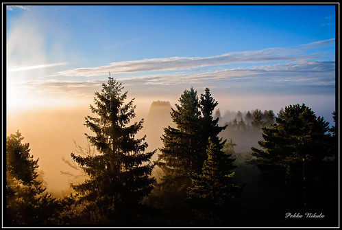 morning mist fog forest sunrise finland usva sumu aamu auringonnousu huittinen puurijärvi