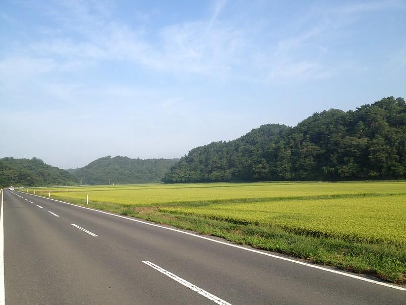 松島へ向かう道 その2