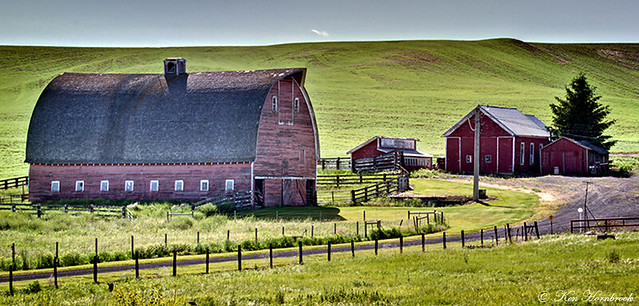 Farm in the Palouse  DSC09697