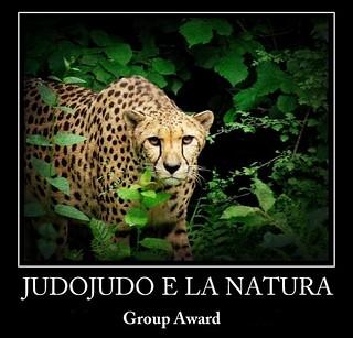 ghepardo5
