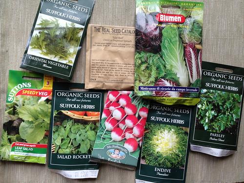 Salad seeds