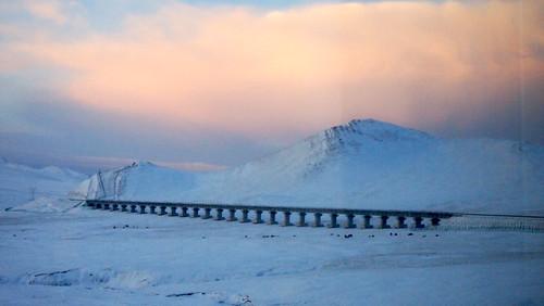 早安,青藏鐵路