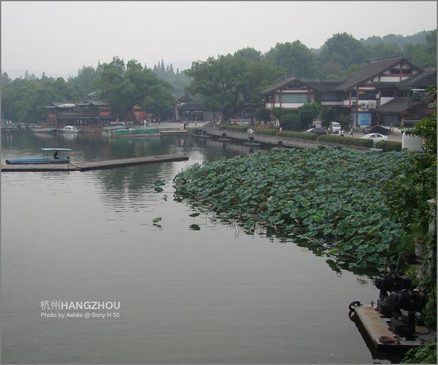 中國行2012_D824
