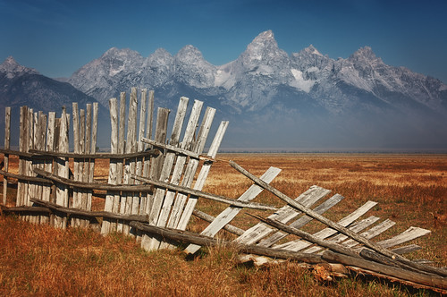 Happy Fence Friday {Grand Teton} Edition!