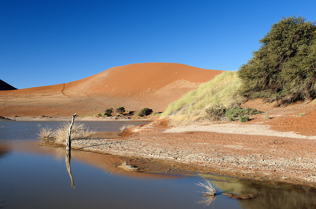 The Giant Sand Dunes at Sossusvlei at Sunset