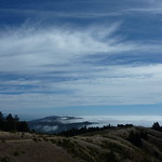 View from the Dipsea Trail on Mt. Tam
