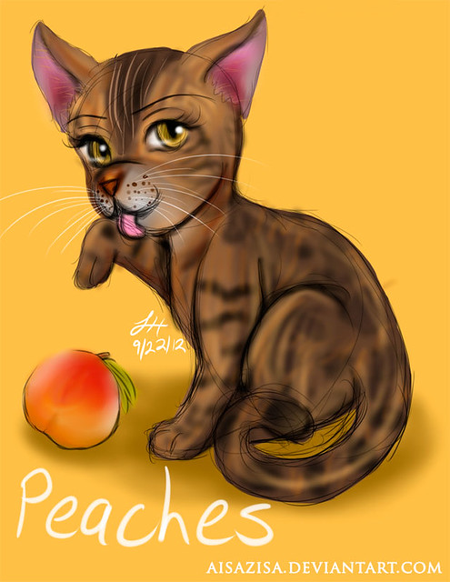 Peaches Sketch