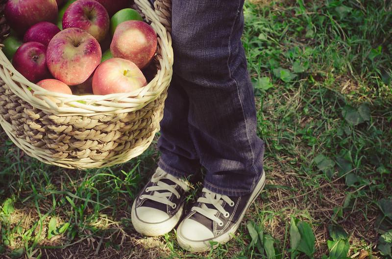 Apples-0149