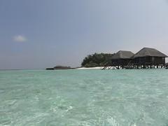 cape(0.0), vehicle(0.0), vacation(0.0), beach(1.0), sea(1.0), ocean(1.0), bay(1.0), island(1.0), body of water(1.0), cay(1.0), shore(1.0), coast(1.0), islet(1.0),