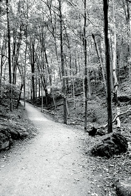 The Loop in Dundas Valley.