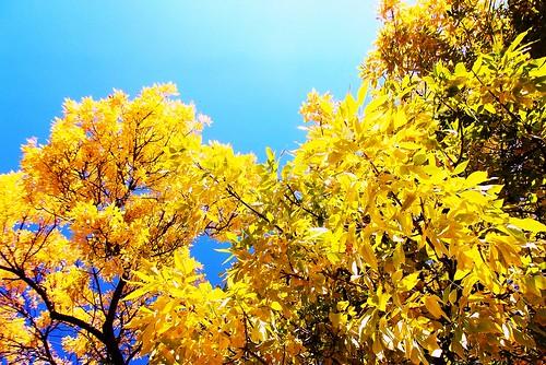 It's Fall in MKE