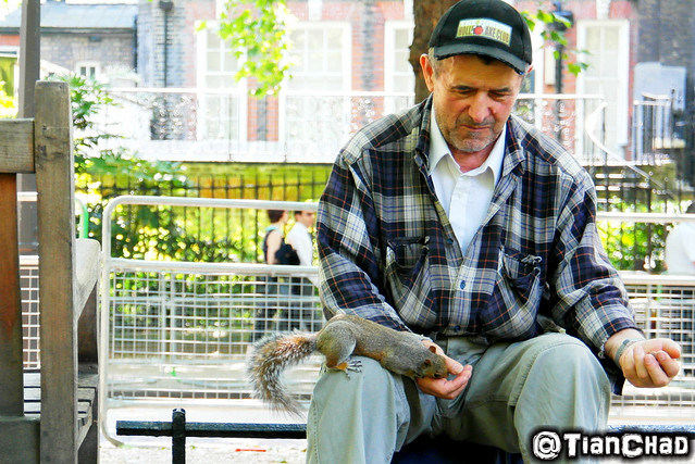 An uncle that can get so close with the squirrels and birds that get food from both his hands. The bird will fly down to his left hand for food!