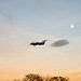 Small photo of Airplane landing by the moon