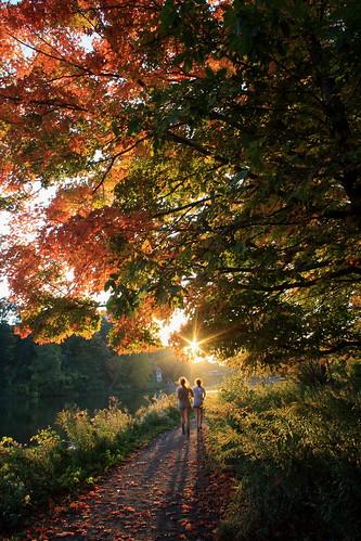 sunset fall cornell ithaca beebelake beginnerdigitalphotographychallengewinner