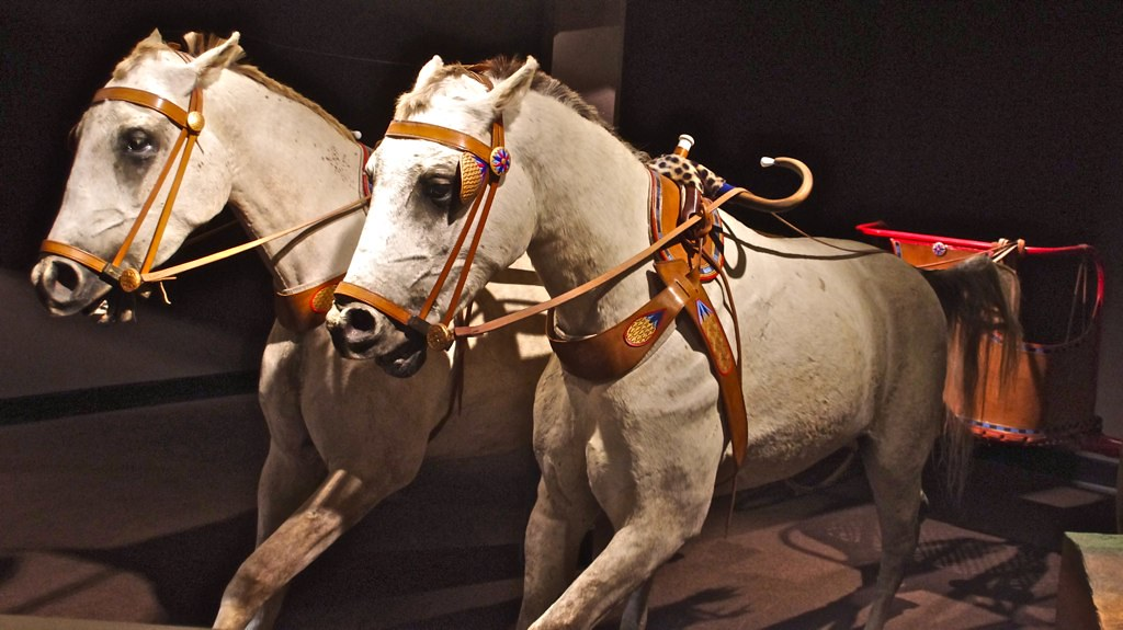 Al-Marah – Arabian Horse Gallery, International Museum of …   Flickr