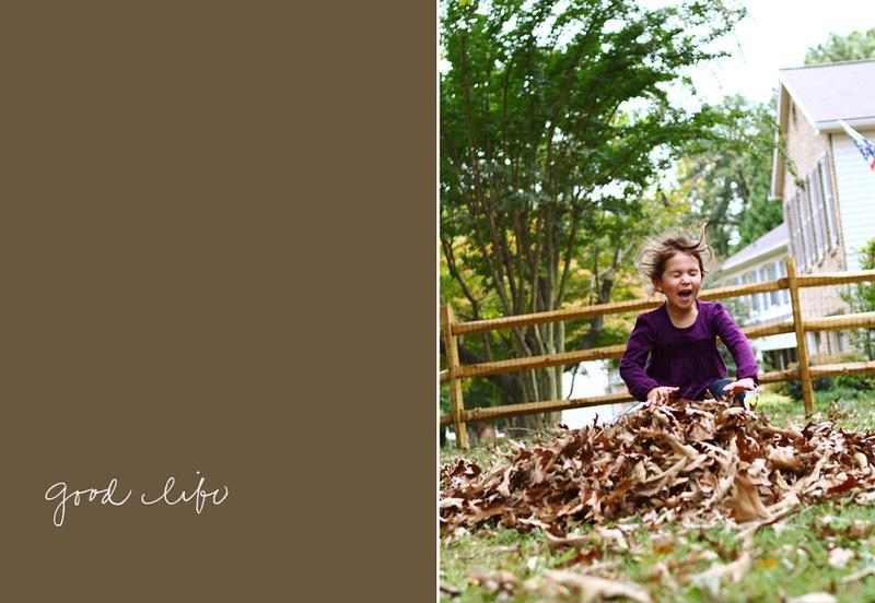leafpile2