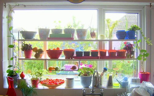 october kitchen window shelving
