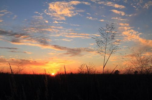 sunset sky grass clouds wetlands prairie grassland