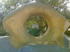 בגן וייל פרדס חנה