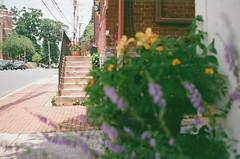 Frederick, Maryland