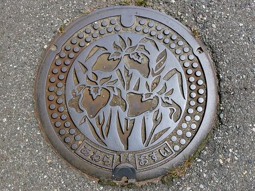 Awara Fukui manhole cover (福井県芦原町のマンホール)