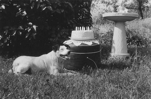 12th Birthday Summer 1941