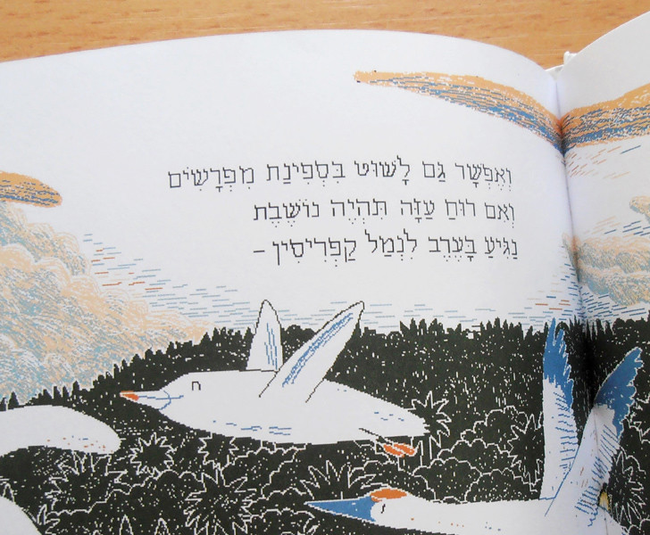 הטקסט בספר