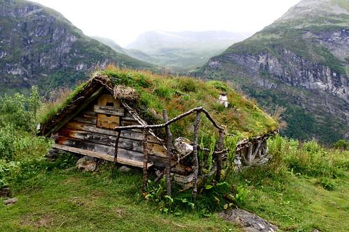 Fjord farm Homlongsetra