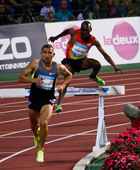 sprint, modern pentathlon, steeplechase, athletics, track and field athletics, endurance sports, 110 metres hurdles, obstacle race, 100 metres hurdles, sports, running, hurdle, heptathlon, person, hurdling, athlete,