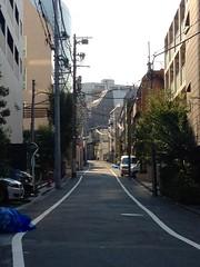 朝散歩 (2012/9/13)