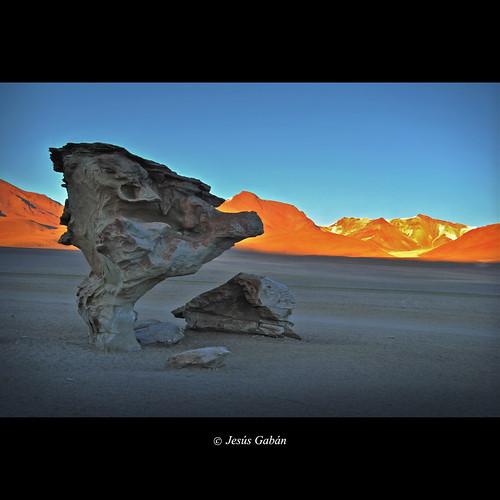 sunrise landscape bolivia paisaje amanecer andes arboldepiedra altiplanoboliviano jesúsgabán mygearandme mygearandmepremium