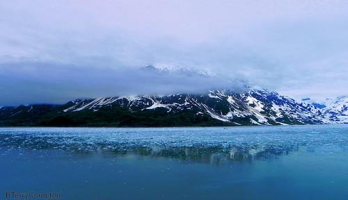阿拉斯加的冰山與冰河。Berkeley T. Compton攝。