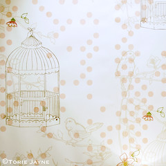Laura Felicity wallpaper